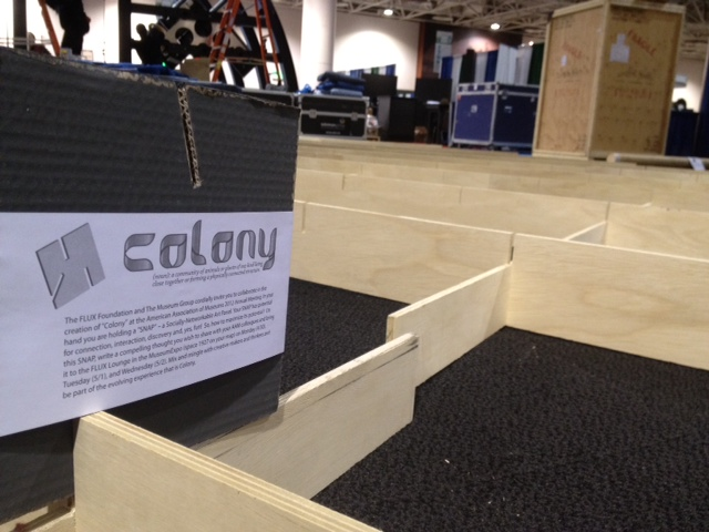 Colony comes to life