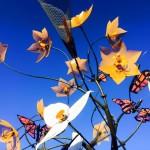 Bloom_bluesky