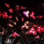 bloom_lights